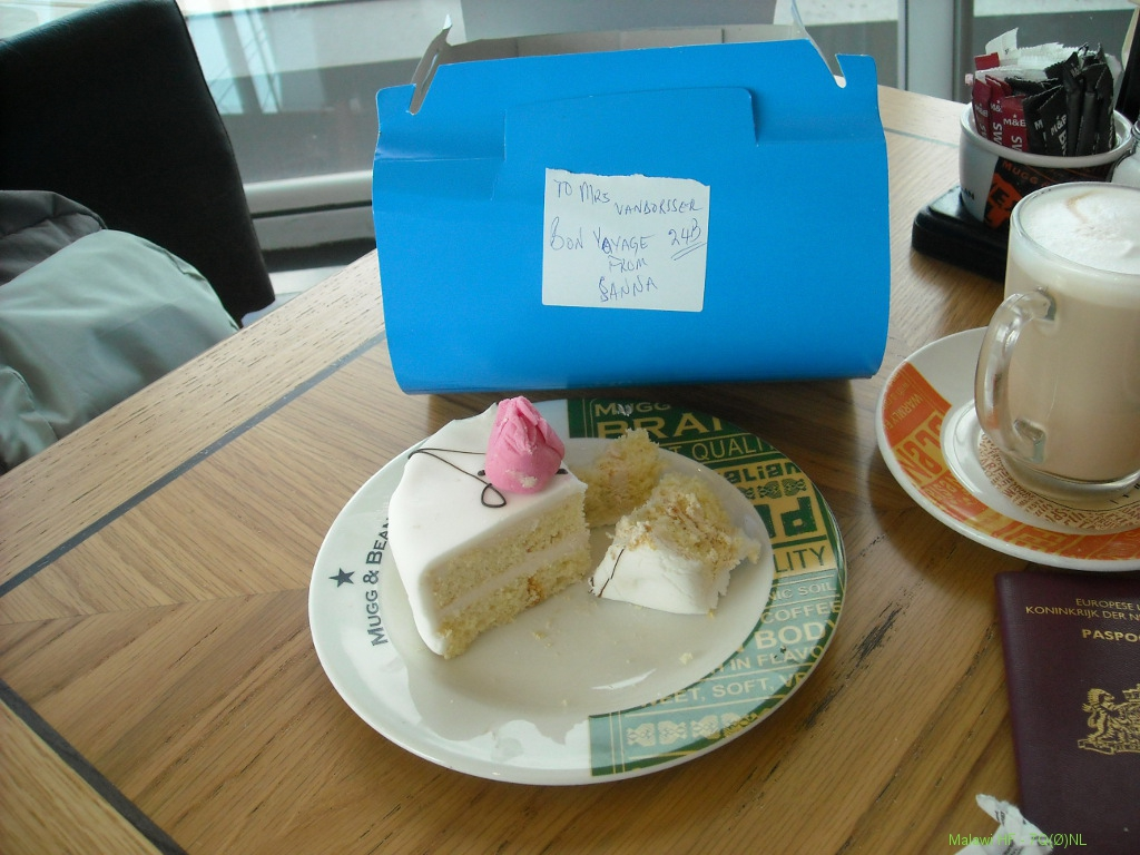 bon-voyage-cake