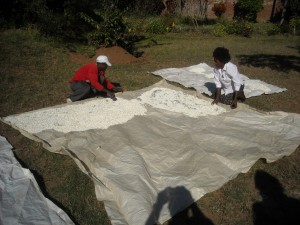 drying nsima